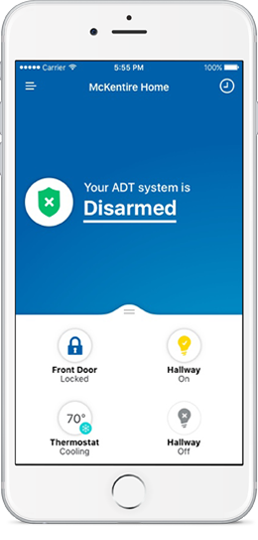ADT Dealer Chicago